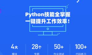 微专业-Python实用技能-职场人必学的Python技能课【价值2800元】