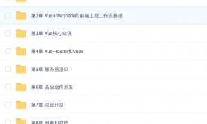 Vue核心技术 Vue+Vue-Router+Vuex+SSR实战精讲