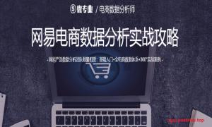 微专业-电商数据分析师【价值1800元】