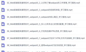 新版Webpack5实战与应用视频教程(566M)