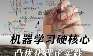 清华博士带队-机器学习硬核心-最优化算法 凸优化算法与优化 烧脑的尖峰算法实战课程