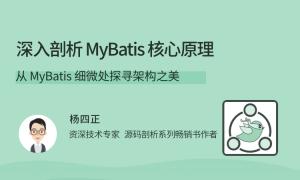 深入剖析 MyBatis 核心原理