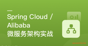 Spring Cloud / Alibaba 微服务架构实战
